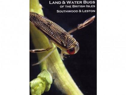 Land & Water Bugs 1