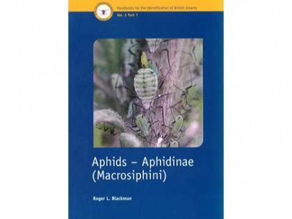 Aphids – Aphidinae (Macrosiphini) 1