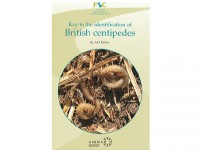 Key to the identification of British centipedes