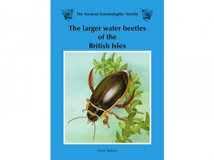 The larger water beetles 1