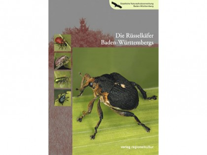 Die Russelkafer Baden Wurttembergs 1