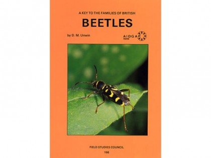 A key to the families of British Beetles 1