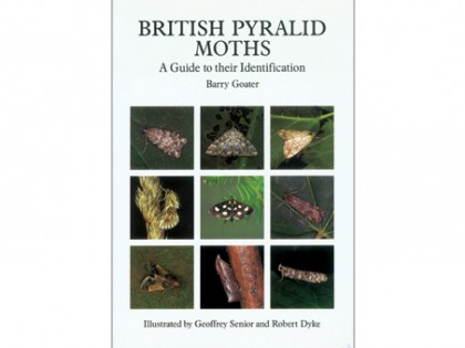 British Pyralid Moths 1