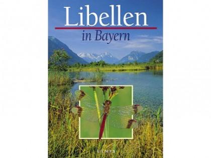 Libellen in Bayern 1