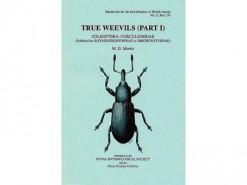 True Weevils Part I