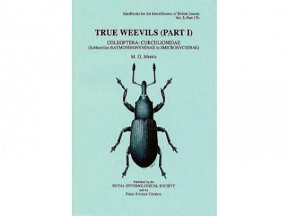 True Weevils Part I 1