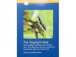 The Staphylinidae (rove beetles) part 2