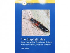 The Staphylinidae (rove beetles)