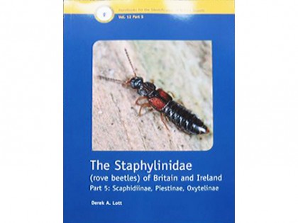 The Staphylinidae (rove beetles) 1
