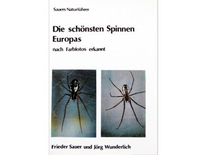 Die schonsten Spinnen Europas 1