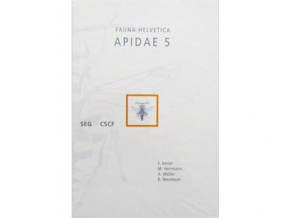 Apidae 5 – Amiet 1