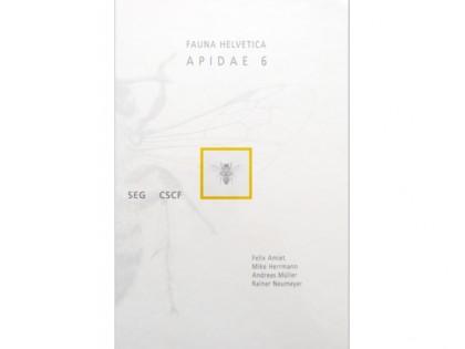 Apidae 6 – Amiet 1