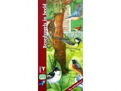Broedvogels in beeld 1