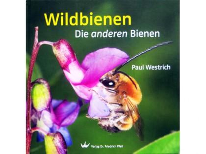 Wildbienen – Die anderen Bienen 1