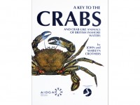 A key to the crabs