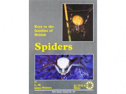 Keys to the families of British Spiders 1