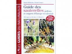 Guide des sauterelles d'Europe