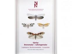 Roeslerstammiidae - Lyonetiidae