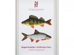 vol. Ryggstrangsdjur: Stralfeniga fiskar