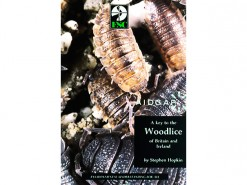 A Key to the Woodlice (pissebedden)