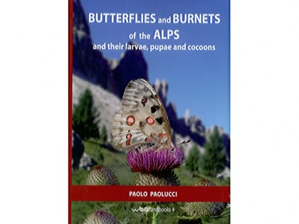 Butterflies and Burnets of the Alps 1