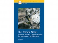 7.306 The Vespoid Wasps