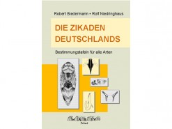 7.571 Die zikaden deutschlands