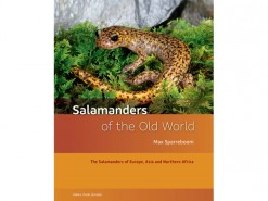 K2 Salamanders of the Old World