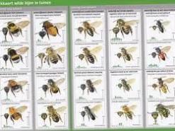 Zoekkaart Wilde bijen in tuinen