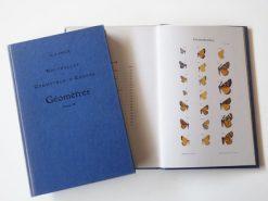 KHB213 Culot Geometres
