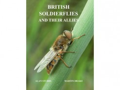 7.257 British Soldierflies