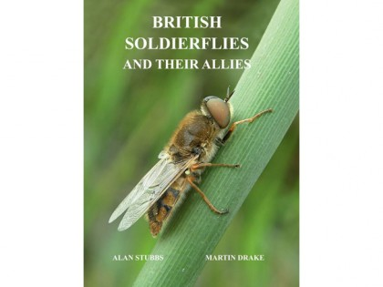 7.257 British Soldierflies