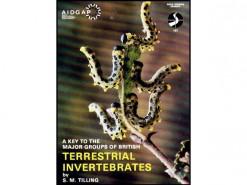 OP167 Terrestrial invertebrates