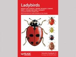 NH09 Ladybirds