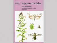 NH22 Insects and thistles