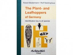 7.511a The Plant- en Leafhoppers