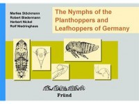 7.574 The Nymphs of the Planthoppers