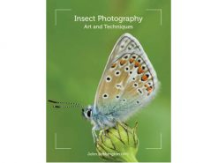 IPAT Insect Photography