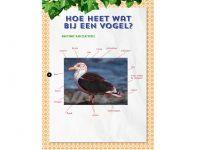 KNNV43 vogels-verrassend-vlakbij-binnen2