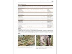 vegetatie-van-Nederland-6--Mossen-en-korstmossen-2