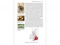 NH34 Leaf beetles binnen1