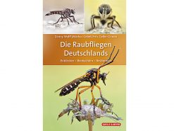 raubfliegen-deutchlands