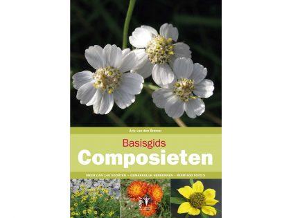 BG02 Basisgids Composieten