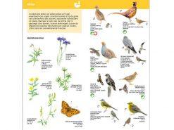 KNNV66 Minigids Boerenlandvogels binnen1