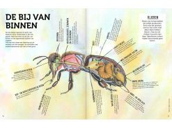 handboek-bijenfans-1