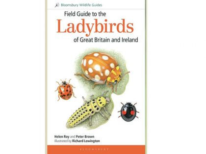 8.199 Field Guide to the Ladybirds GB and Ieeland