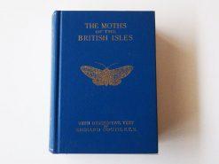 KHB196 moths-of-british-isles-2