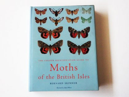 KHB204a The moths of the British Isles