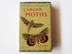 KHB206 Larger Moths
