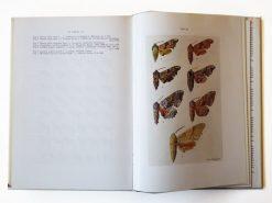 KHB221 Die Schmetterlinge Mitteleuropas Spinner und Schwarmer binnen